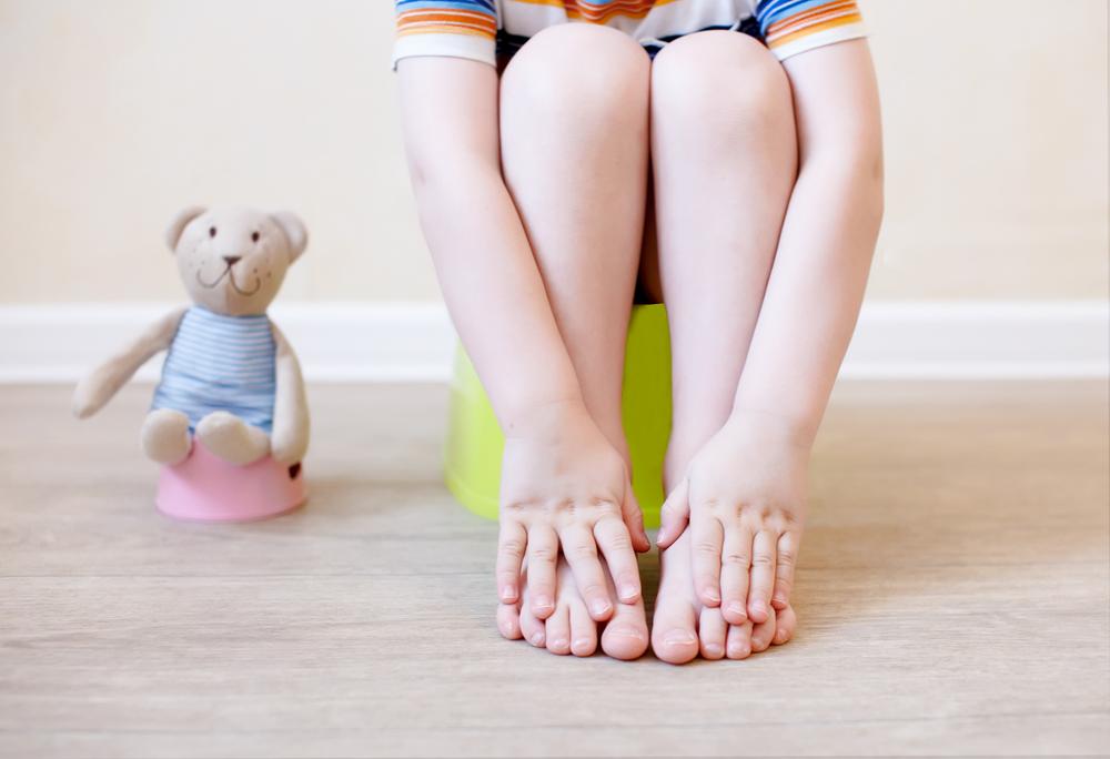Montessori toddler guide