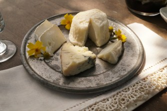 The Queen of Thorn's cheese
