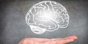 Мозг в вашей ладони
