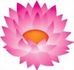Chakra Meditation: Heart Center Lotus