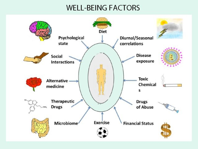 Wellbeing Factors