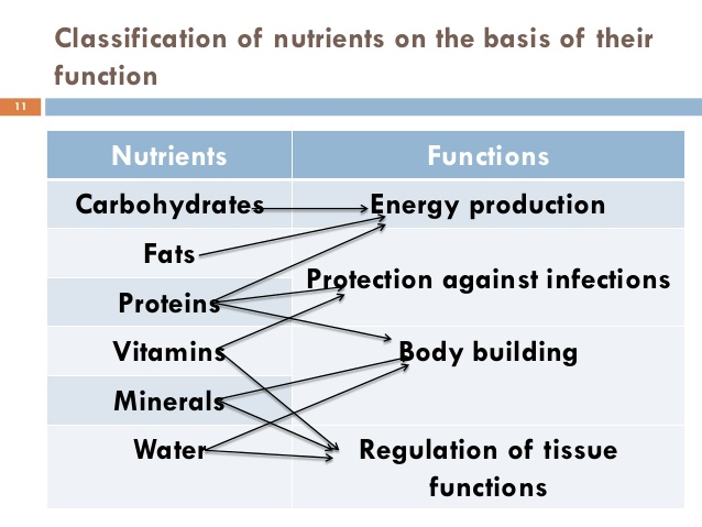 six major nutrients that boost the human body Start studying week 3: chapter 7: nutrition learn vocabulary,  the six essential nutrients include  essential nutrients nutrients the body can't make we need.