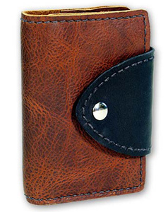Renaissance Art Leather Case Front