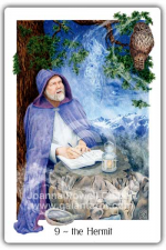 The Hermit from The Gaian Tarot by Joanna Powell Colbert