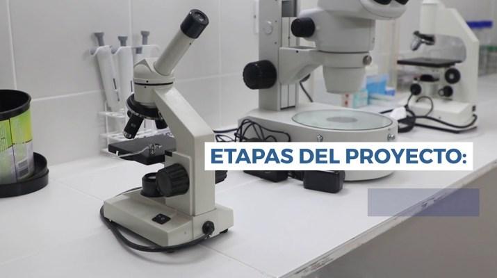 Laboratorio de mejoramiento genético porcino| Proyectos de innovación tecnológica.