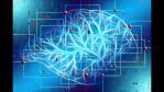 Herramientas de inteligencia artificial en la lucha contra el coronavirus COVID-19