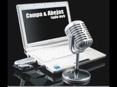 Campo y Abejas radioweb 25 3 21