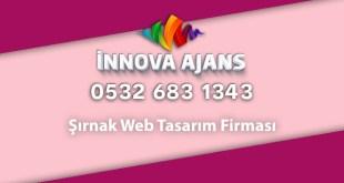 Şırnak web tasarım firması