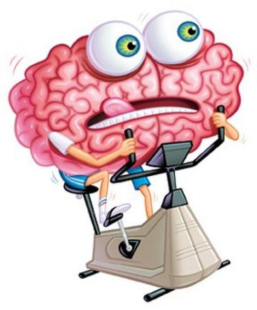 Cerebro y propiocepción