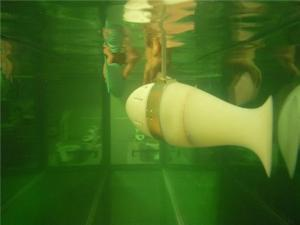 Robotic Fish Gain New Sense: Navigate Water Currents and Turbulence