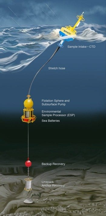 New Robotic Instruments to Provide Real-Time Data on Gulf of Maine Red Tide
