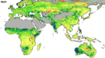 Deserts 'greening' from rising CO2