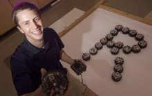 A swarm on every desktop: Robotics experts learn from you, the public