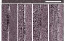 'White graphene' halts rust in high temps