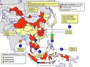 300px-Avian_influenza_spread_map