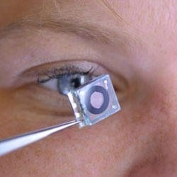 Inspired by the human eye, imaging system detects disease, hazardous substances