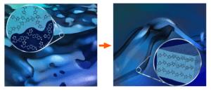 polymerblendmorphology
