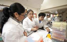 Research: It's more than just the science