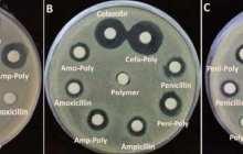 Penicillin redux: Rearming proven warriors for the 21st century
