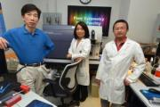 Liver cancer vaccine effective in mice