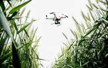 Drones give farmers eyes in the sky to check on crop progress