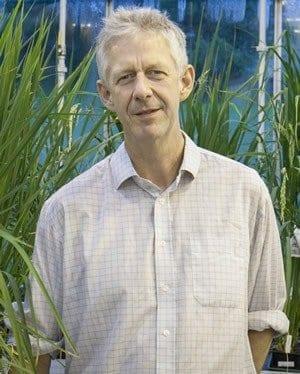Professor Simon McQueen-Mason. Copyright: Phil Roberts, York University