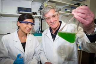 Engineers Make Synthetic Photosynthesis Breakthrough
