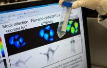 A new weapon in war against flu pandemics and pneumonia