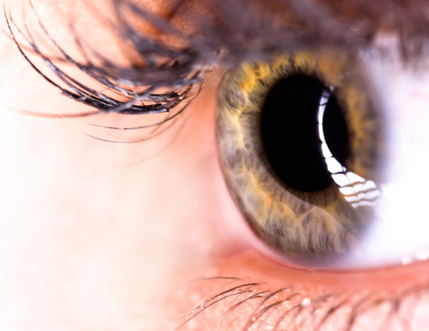 Stem Cell Injection May Soon Reverse Vision Loss Caused By Age-Related Macular Degeneration