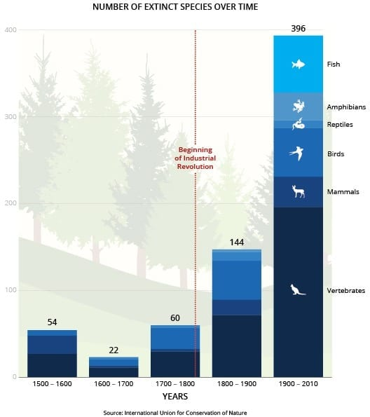 Chart shows the enormous uptick in species loss over the last century. via IUCN