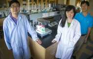 Team develops new storage cell for solar energy storage AND nighttime conversion
