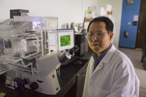 Wichita State University researcher Li Yao is studying how an electric signal can help promote repairs to injured spinal cords. Wichita State University