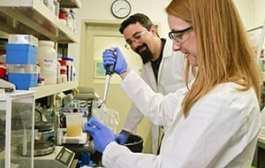 BESC creates microbe that bolsters isobutanol production by 10x