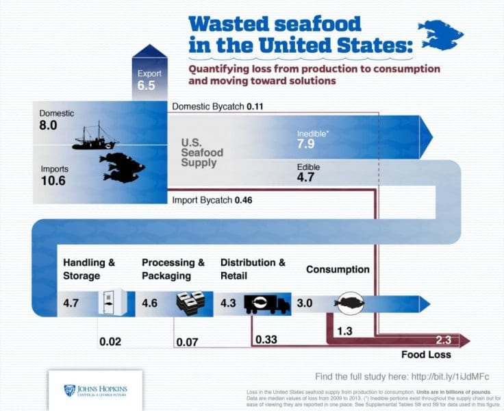 via www.sciencedaily.com