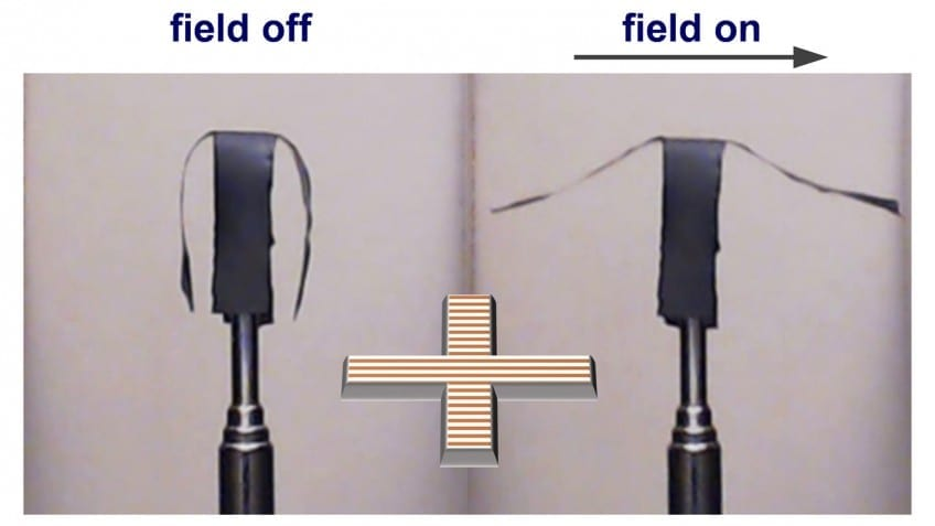 Selective actuation of the side arms of a soft robot in a horizontal uniform magnetic field. Image credit: Sumeet Mishra.