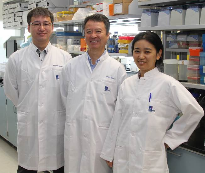 The IBN researchers who invented the more efficient DNA aptamer technology (from left: Mr Ken-ichiro Matsunaga, Dr Ichiro Hirao and Dr Michiko Kimoto).