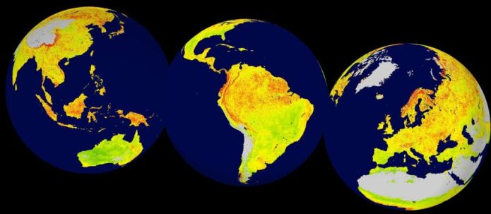 A NEW METHOD FOR ECOSYSTEM SENSITIVITY: Global map of the Vegetation Sensitivity Index (VSI), a new indicator of vegetation sensitivity to climate variability using satellite data. Red colour shows higher ecosystem sensitivity, whereas green indicates lower ecosystem sensitivity. Grey areas are barren land or ice covered. Inland water bodies are mapped in blue. Copyright: LEFT