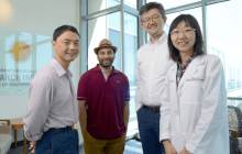 Researchers link absence of protein to liver tissue regeneration