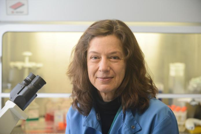 This is a picture of Dr. Gunnel Hallden, Barts Cancer Institute, QMUL. CREDIT Pancreatic Cancer Research Fund