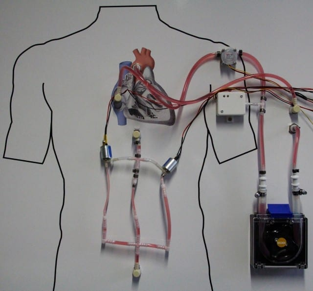Photo Fraunhofer IPA Exhibit to demonstrate the application potential of the hardware-in-the-loop method using the example of a heart assist pump.