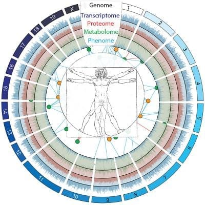 """Understanding the different biological """"layers"""" of an individual is the key to personalized medicine. CREDIT Johan Auwerx/EPFL"""