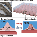 Octopus-Inspired Flexible Pressure Sensors