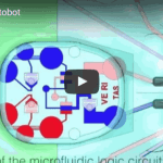 The first autonomous, entirely soft robot: with no electronics