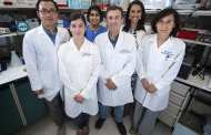 Lab team spins ginger into nanoparticles to heal inflammatory bowel disease
