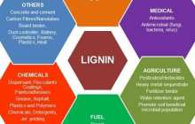 Turning ubiquitous lignin into high-value chemicals for biofuels