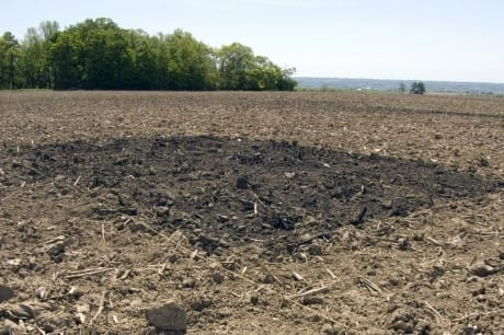 Charles Hyland/Provided In this test plot of biochar, carbon is amended to the soil - where it stays - where it can be used as a fertilization substitute for crops.