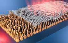 Travelling through the body with graphene