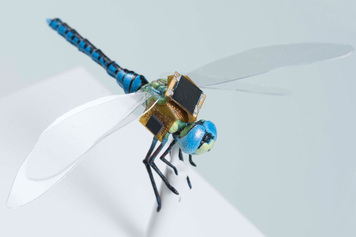 DragonflEye uses dragonfly cyborgs for guided pollination, payload delivery, reconnaissance and even precision medicine and diagnostics