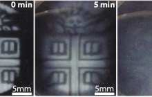 Making 3-D-printed biomaterials that can degrade on demand