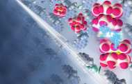 Organic electronics move towards widespread use with new breakthrough